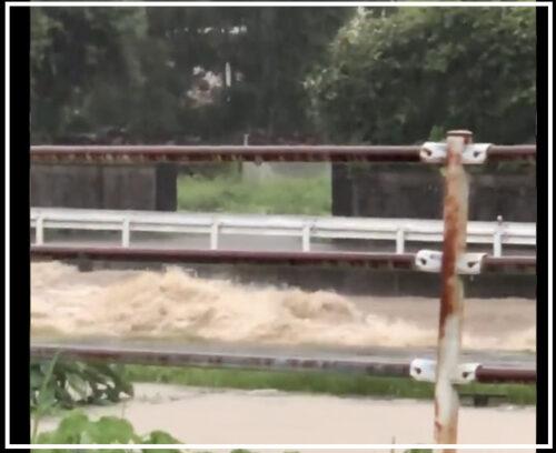 【氾濫】熊本県南関町「関川」が氾濫!現在の被害状況まとめ!