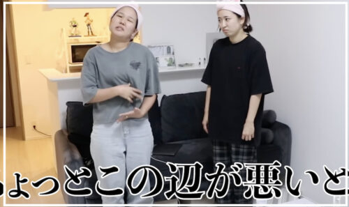 平成フラミンゴの活動休止理由はガンと難聴?原因はストレスと睡眠不足!